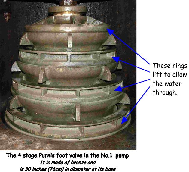 The Purnis foot valve